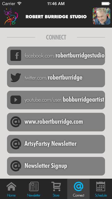 Burridge Studio screenshot 5