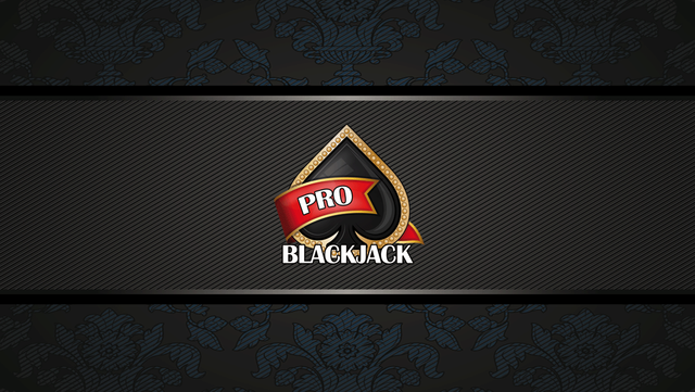 Blackjack Pro­ screenshot 1