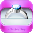 The Big Day! On iPad and iPhone! - Wedding Planning App