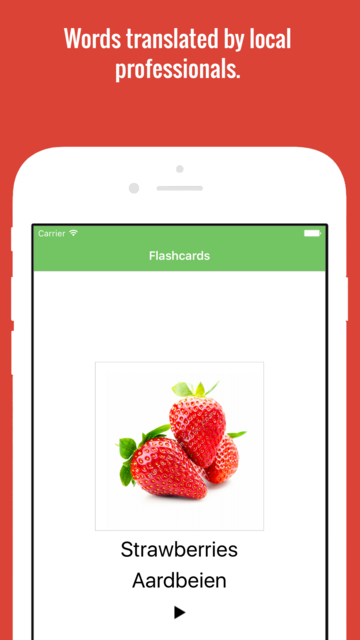 Dutch Flashcards with Pictures screenshot 1