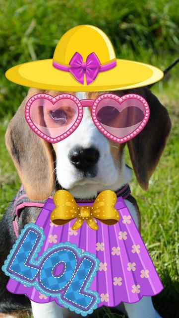 My Little Princess Photo Booth- Fairy tale dress up editor for girls screenshot 4