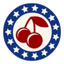 Icon for SlotAmerica